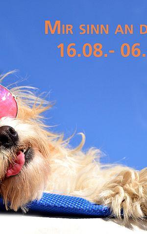 Summervakanz - Bild: ©Natallia Vintsik / Adobe Stock